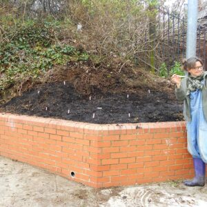 planting wild flowers