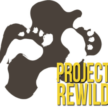 Project Rewild