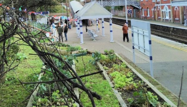 Community Garden Session - Tuesday evenings @ Warrior Square Station Community Garden
